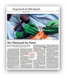 Pressebericht-Degerloch-und-Sillenbuch