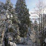Klinik Degerloch Stuttgart im Winter